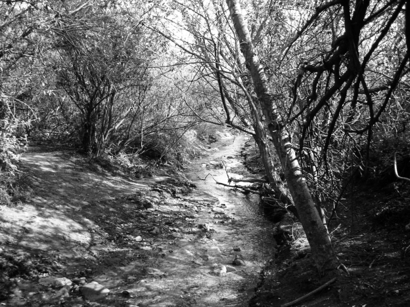 corral canyon edit bw